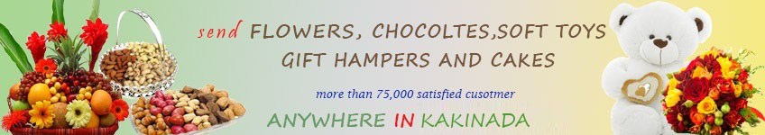 Send to Kakinada