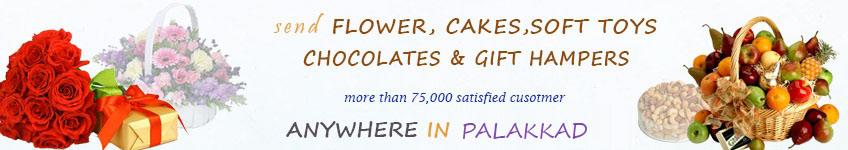 Send to Palakkad