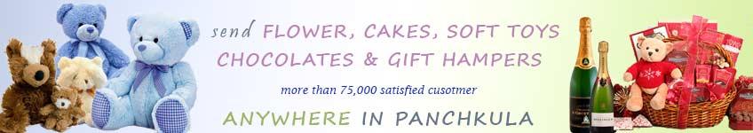 Send to Panchkula